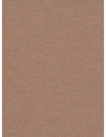 "Seamless Hazelnut - 2.72m x 11m roll (8'11"" x 36ft)"