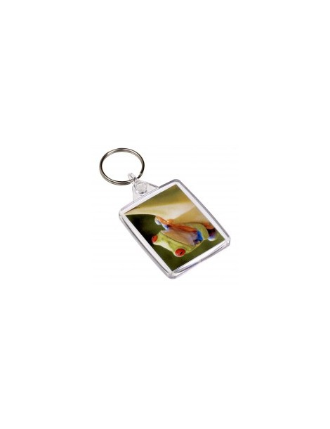 PHOTO PASSPORT KEY FOB (BULK PACK OF 50)