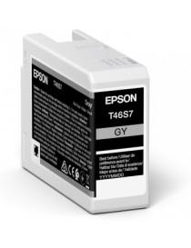 Singlepack Gray T46S7 UltraChrome Pro 10 ink 25ml P-700